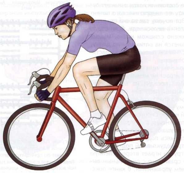 1368513303 pravilnaya-posadka-velosipedista