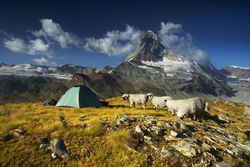 Прокат палаток в Красной Поляне Сочи