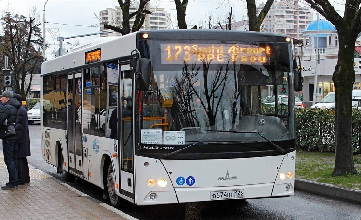 173-bus