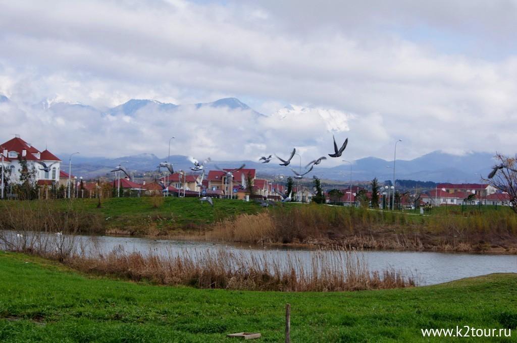 Орнитологический парк