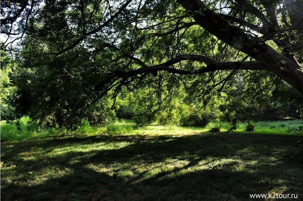 Park Uzhnie Kultyri Adler 7